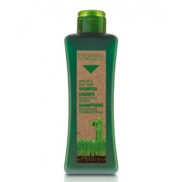 Oily hair shampoo 1000 ml